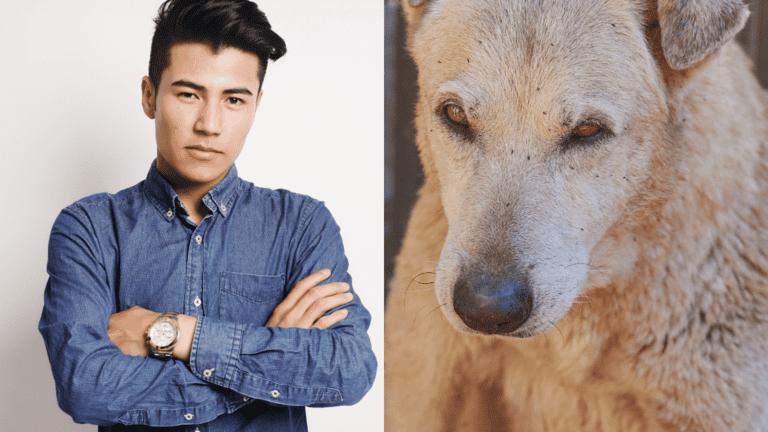 Hundefloh Menschen